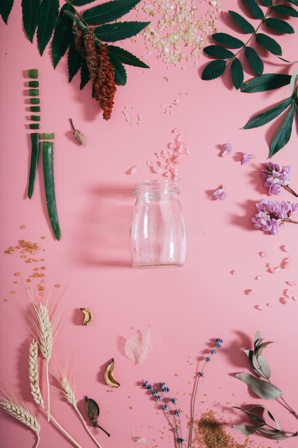 创造性的平的空的瓶嘲笑位置顶视图在淡色千福年的桃红色纸背景拷贝空间 文本的模板 免版税库存图片