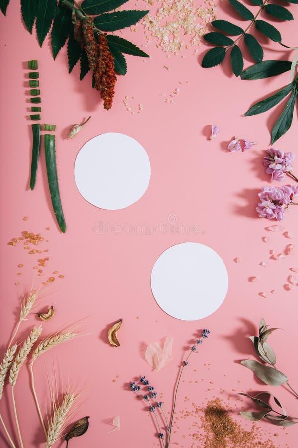 创造性的平的空的纸页嘲笑位置顶视图在淡色千福年的桃红色纸背景拷贝空间 文本的模板 免版税库存照片