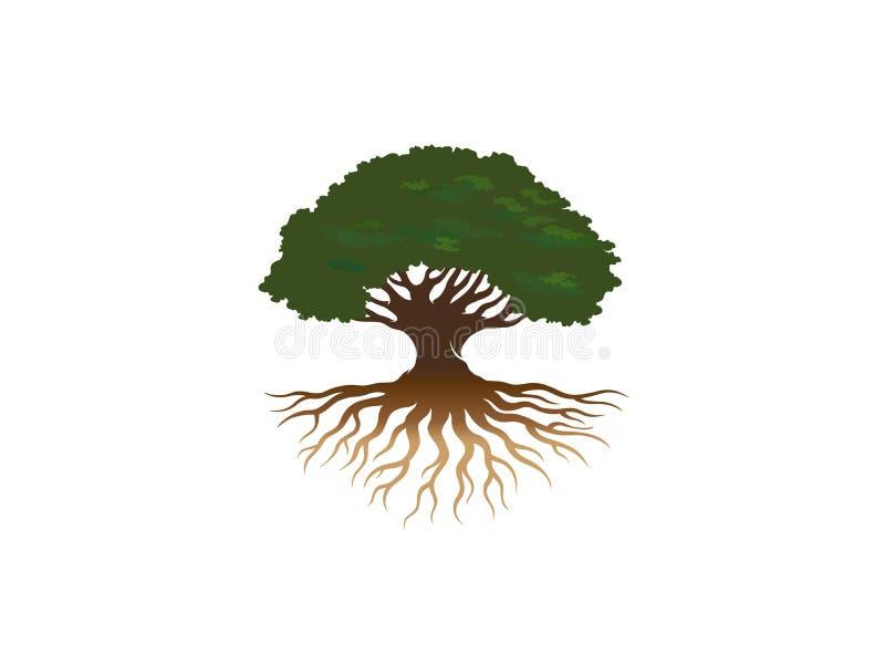 创造性的树根商标 库存例证