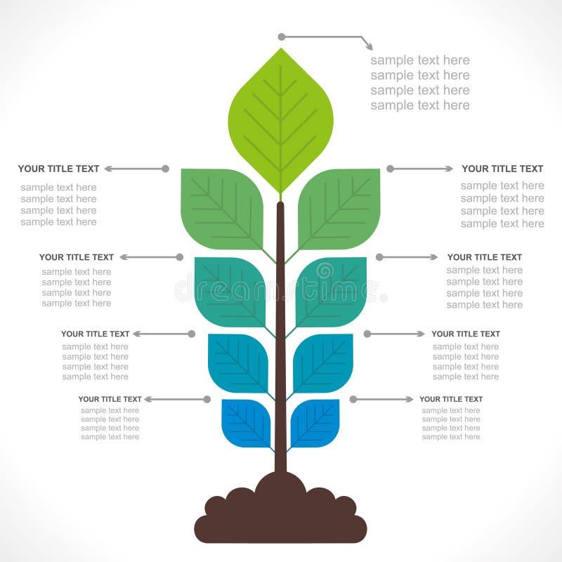 创造性的植物信息图表 皇族释放例证