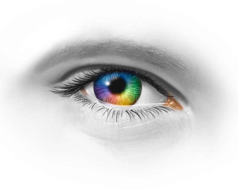 创造性的眼睛 库存例证