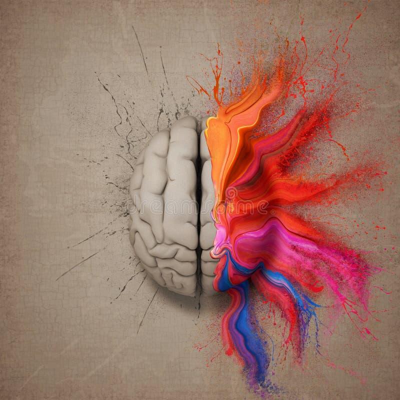 创造性的脑子 向量例证