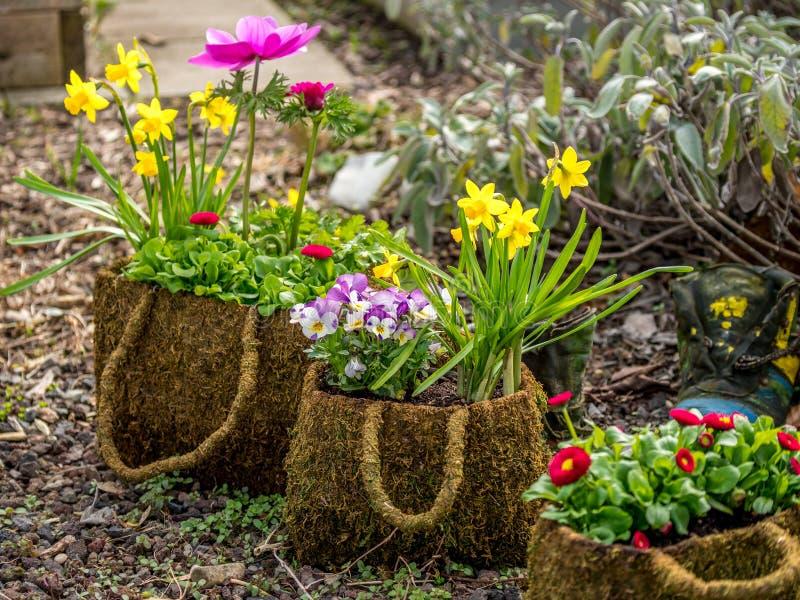 创造性的花装饰的图象在庭院里 免版税库存照片