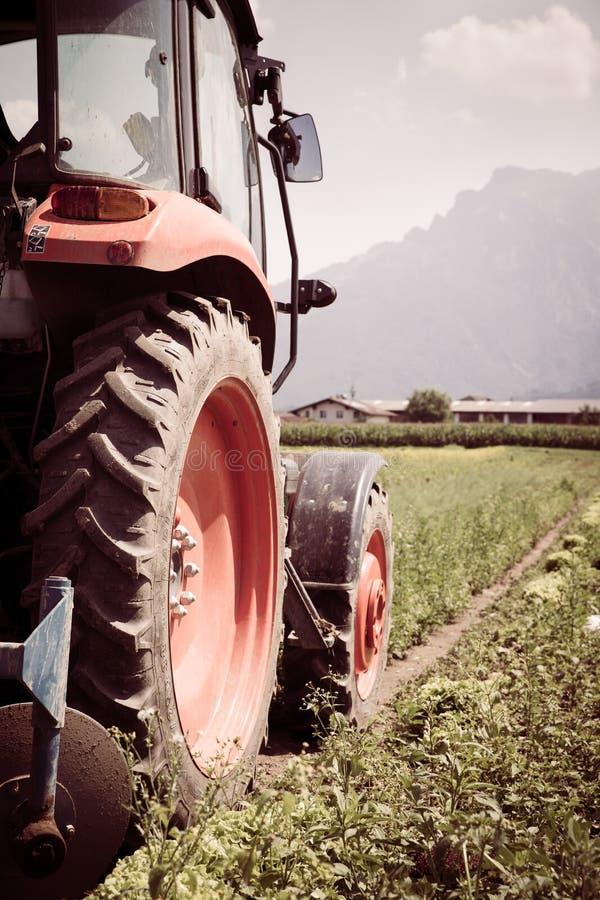 删去拖拉机在春天的培养领域,农业 库存照片