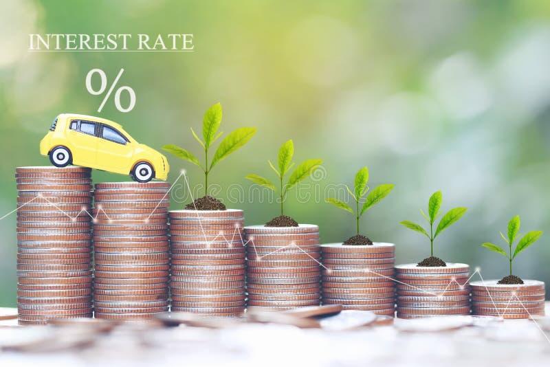 利息和银行业务概念、微型黄色汽车生长在堆的模型和植物在自然绿色的硬币金钱 免版税库存图片