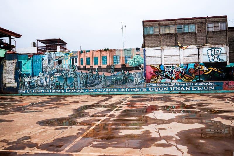利昂尼加拉瓜 nat第14 雨是在学生的秋天停放 E 免版税图库摄影