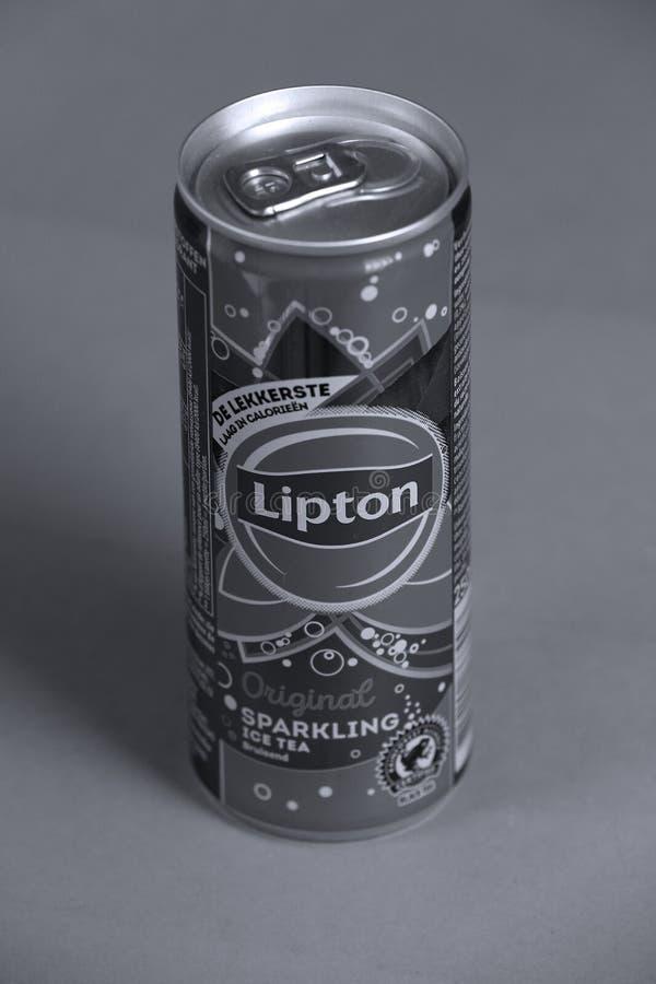 利普顿闪耀的茶罐头,被隔绝,拷贝空间 免版税库存图片