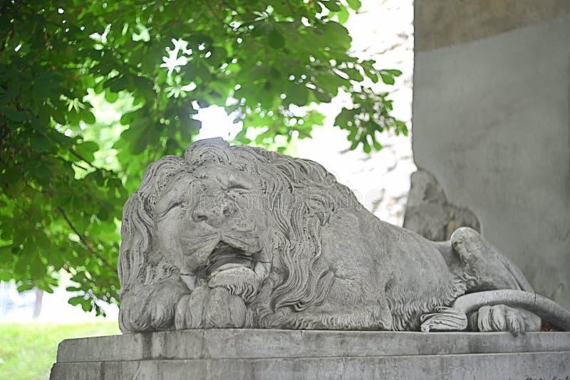 利沃夫历史狮像 免版税库存照片