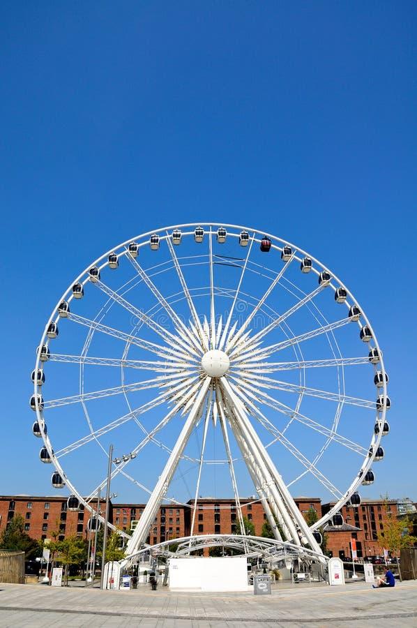 利物浦回声轮子  库存图片