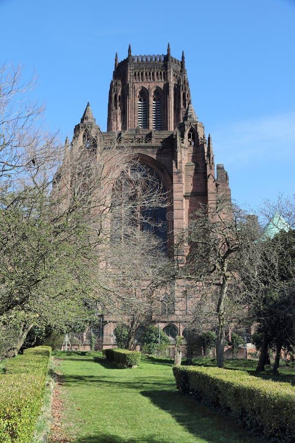 利物浦大教堂  库存图片