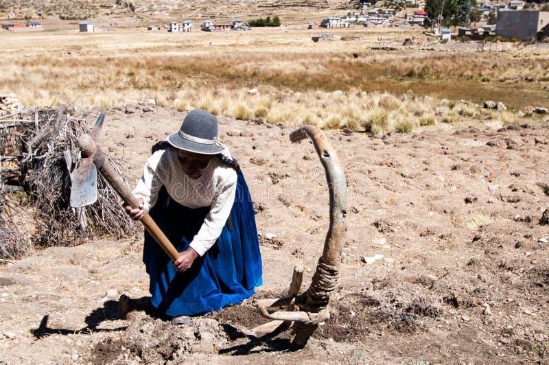 玻利维亚- Isla在Titicaca湖的del Sol 库存照片