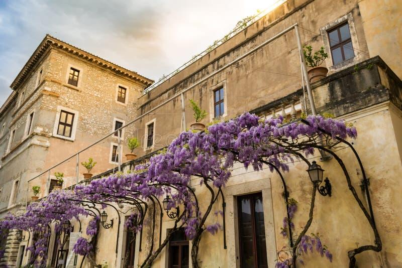 别墅德斯特在黄昏的蒂沃利 与紫藤荫径形成对比的温暖的颜色 库存图片