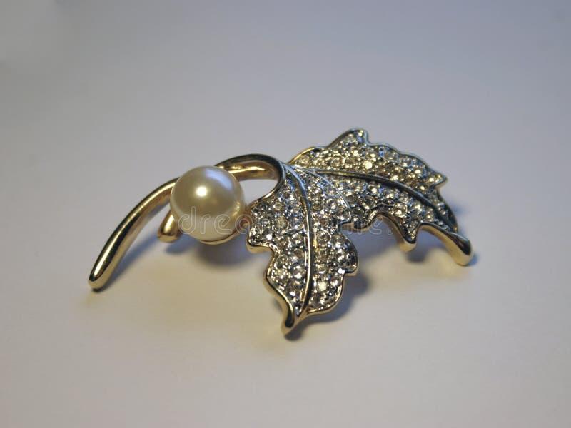 Download 别针 库存照片. 图片 包括有 装饰, 珍贵, 珍珠, 女性, 别针, 金刚石, 石头, 珠宝 - 58414