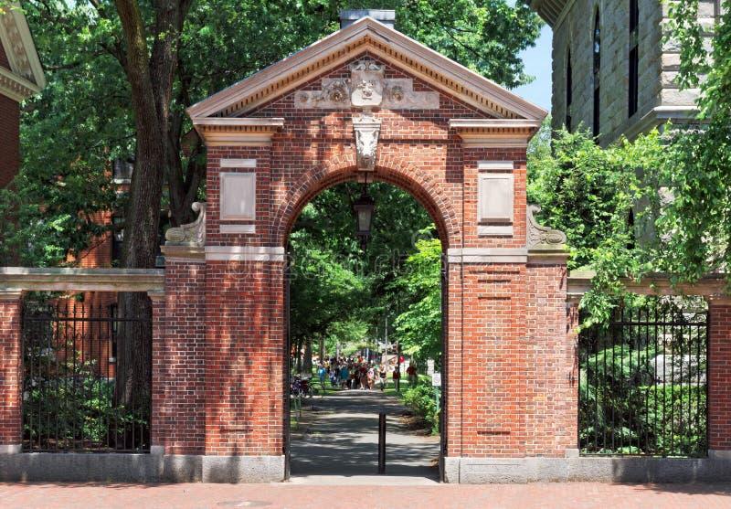 到哈佛 库存照片