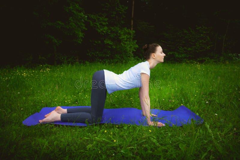制定出瑜伽在健身席子的美丽的妇女excercises mardzhariasana 免版税库存图片