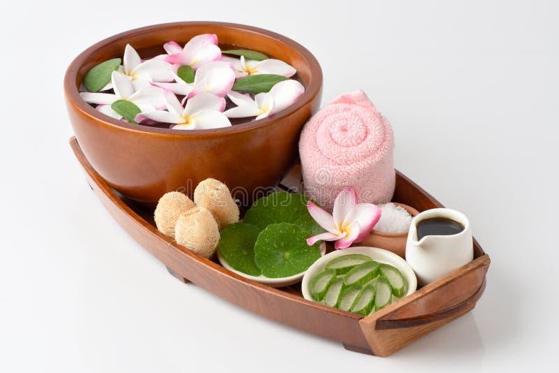 洗刷与盐混合芦荟维拉、亚洲草本Pennywort、的老虎和蜂蜜的温泉 免版税库存图片
