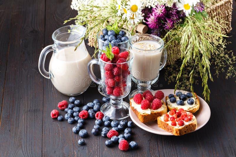 刷新的燕麦粥为健康吃喝并且节食概念,素食主义者吃 库存照片