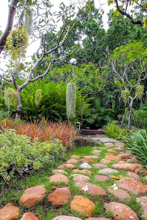刷新的绿色庭院,有石头的走道 免版税库存照片