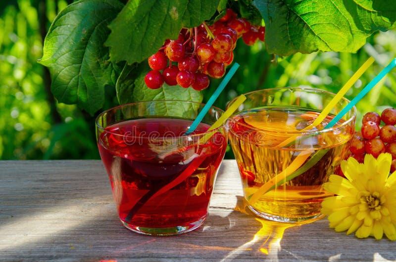 刷新的苹果计算机和樱桃汁液 库存图片