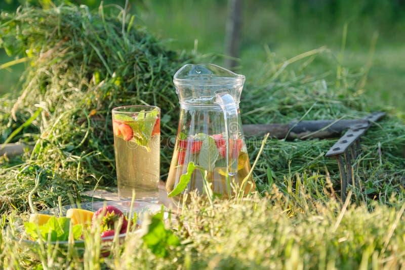刷新自然自创饮料、水罐和杯清凉茶的夏天用在草的草莓薄荷的柠檬 免版税库存照片