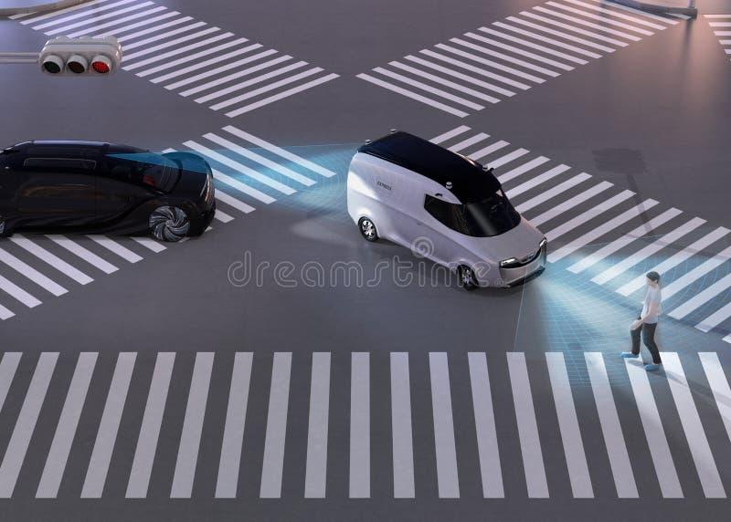 刹车黑汽车的紧急状态避免从等待步行走的十字架的微型货车的交通事故 向量例证