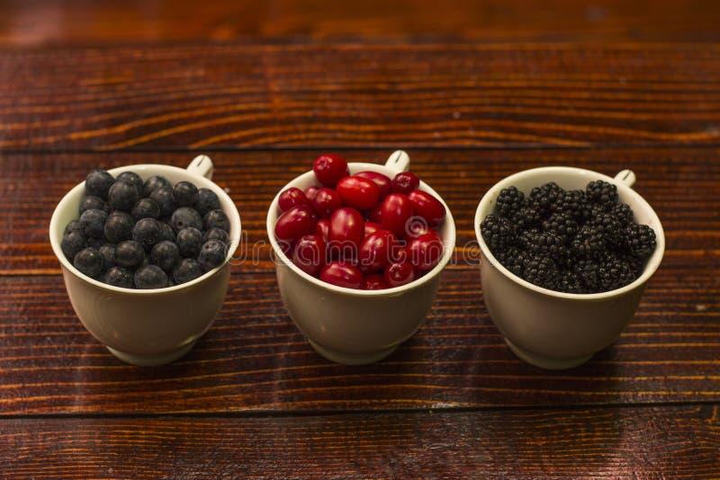 黑刺李莓果 Cornels 黑莓 库存图片