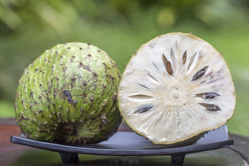 刺番荔枝, Guanabana,南美番荔枝,番荔枝科muricata在自然背景,关闭 海岛巴厘岛,印度尼西亚 免版税库存照片