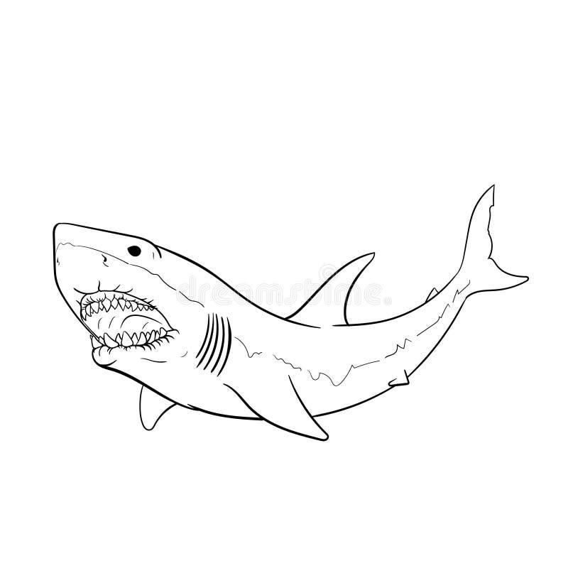 刻记例证的大白鲨鱼手图画葡萄酒 r 皇族释放例证