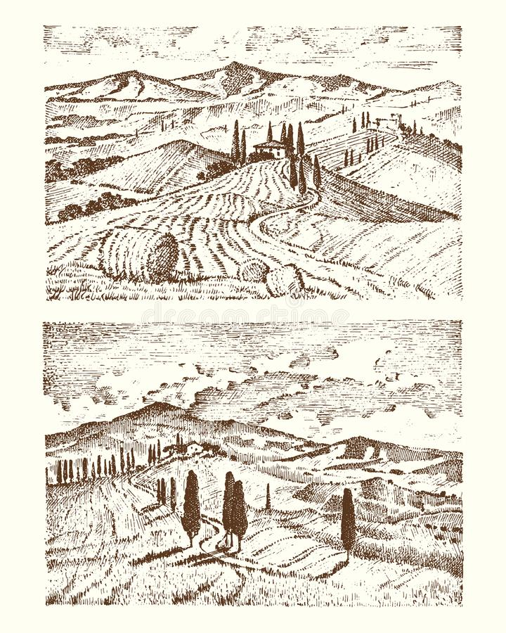 刻记手拉在标签的老剪影和葡萄酒样式 意大利语托斯卡纳调遣背景和柏树 皇族释放例证