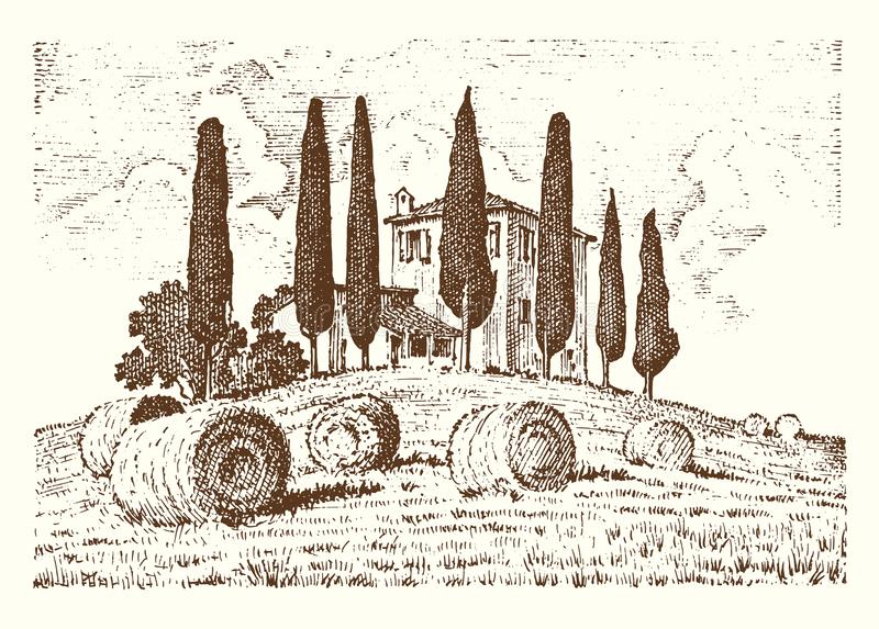 刻记手拉在标签的老剪影和葡萄酒样式 意大利语托斯卡纳调遣背景和柏树 向量例证