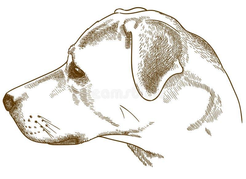 刻记拉布拉多猎犬杂种狗头的例证 库存图片