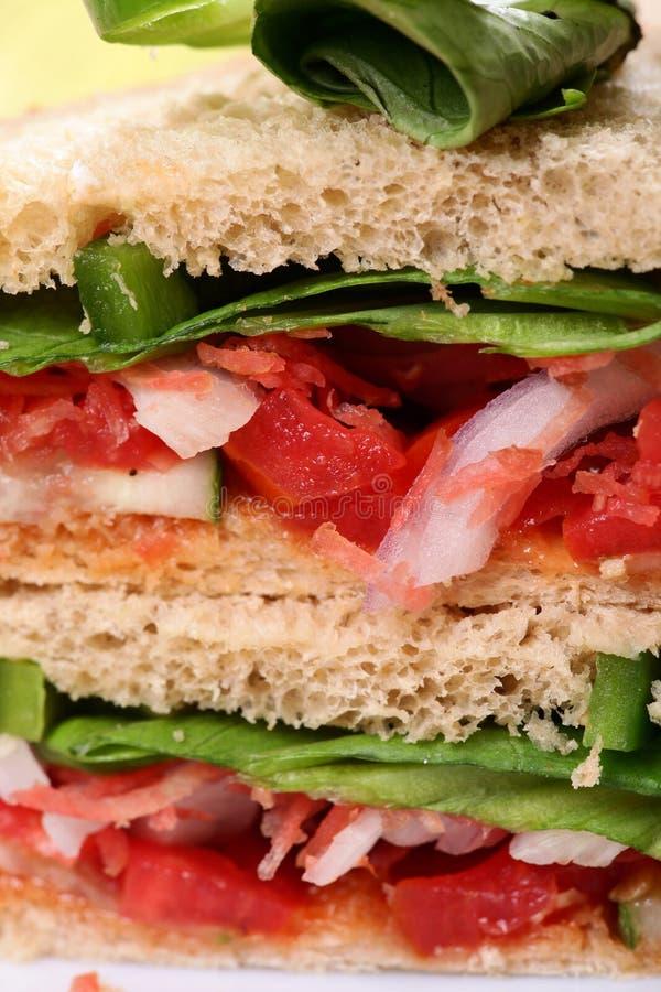 削减sandwitch蔬菜verticle 库存照片