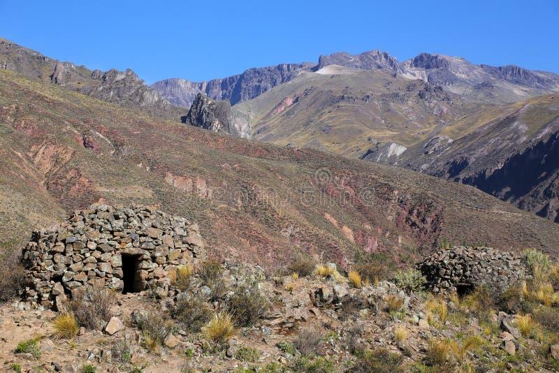 前印加圆的房子在Chivay附近命名了colca在秘鲁 库存图片