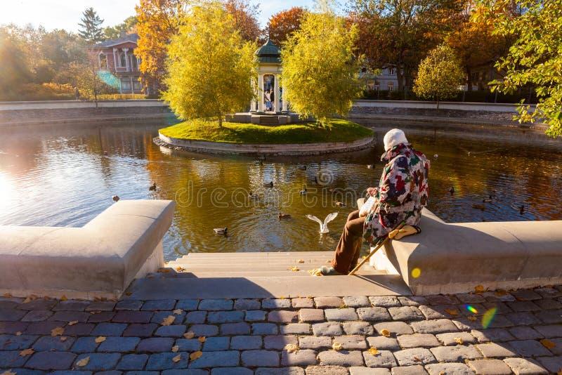 前辈在秋天公园 库存照片