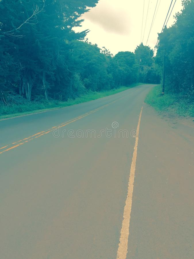 前面路的朦胧的看法 库存照片