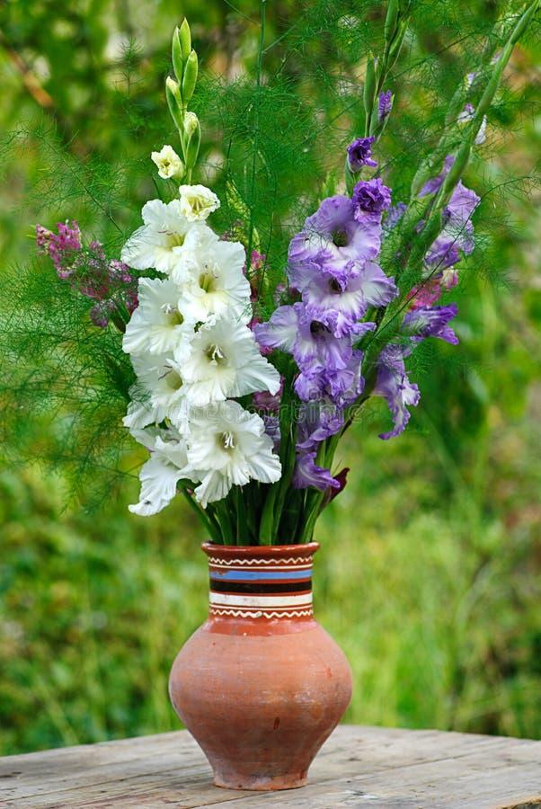 剑兰花瓶 免版税图库摄影