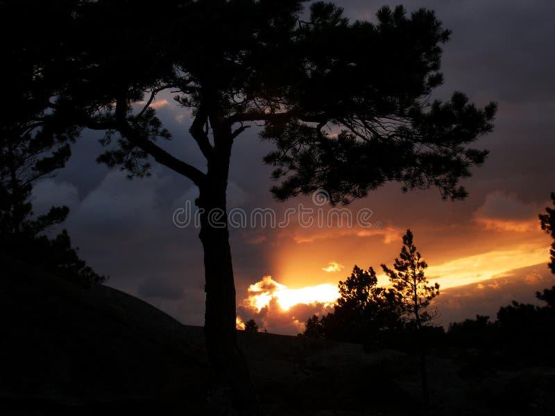 剧烈的日落在风雨如磐的夜前 库存图片