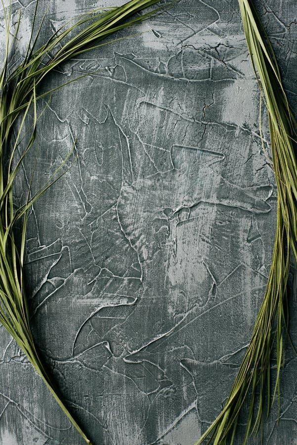 剧烈的灰色与棕榈叶的难看的东西无缝的石头纹理威尼斯式膏药背景装饰 库存照片