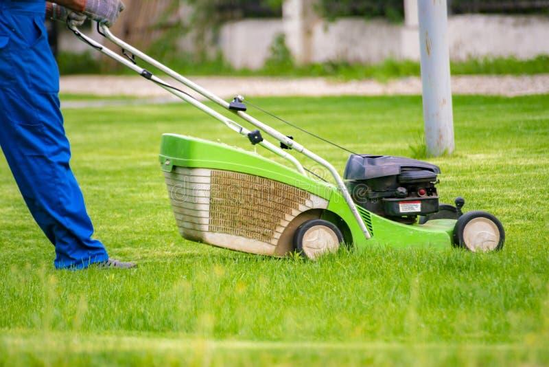 剪与刈草机的花匠工作者草在后院草坪领域 免版税库存图片