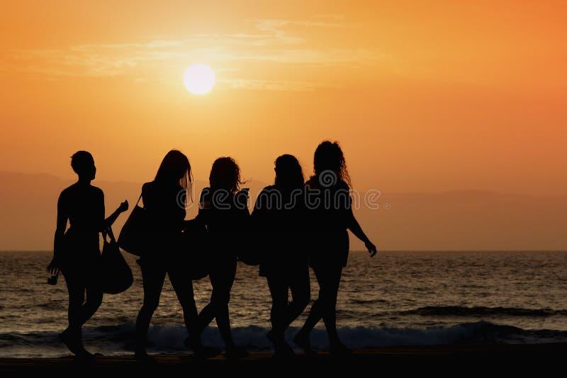 剪影五妇女走 库存照片