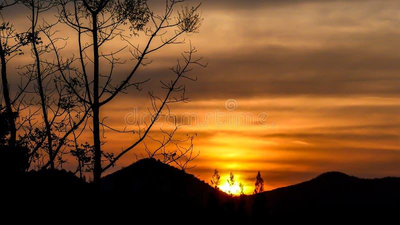 剪影图象-在山和树后的日落 库存图片
