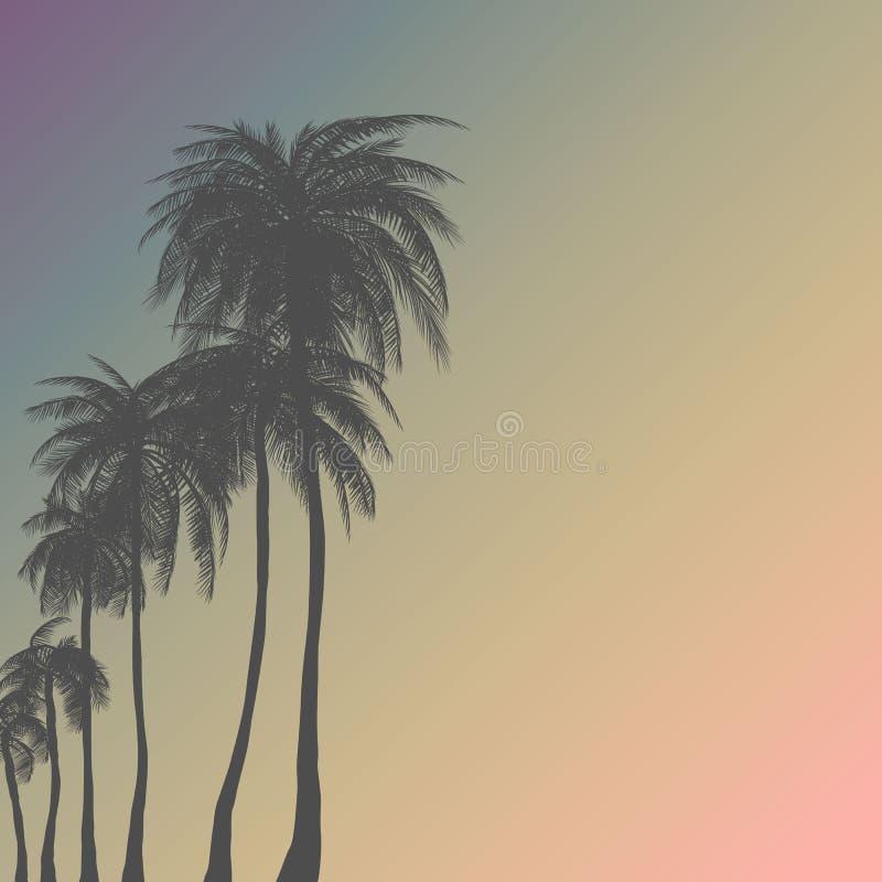 剪影在平的象设计的棕榈树在与葡萄酒过滤器背景传染媒介的日落 皇族释放例证