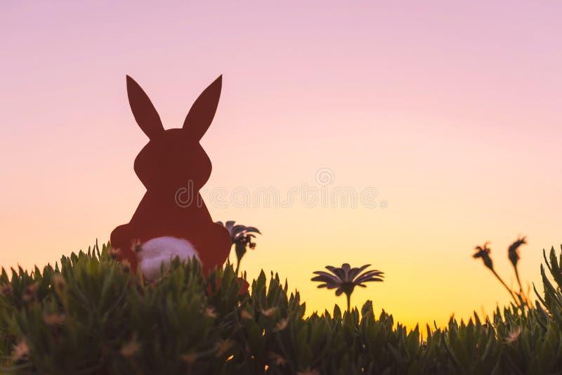剪影在春黄菊花和绿草的纸兔子创造性的复活节照片在日落天空背景 免版税库存照片