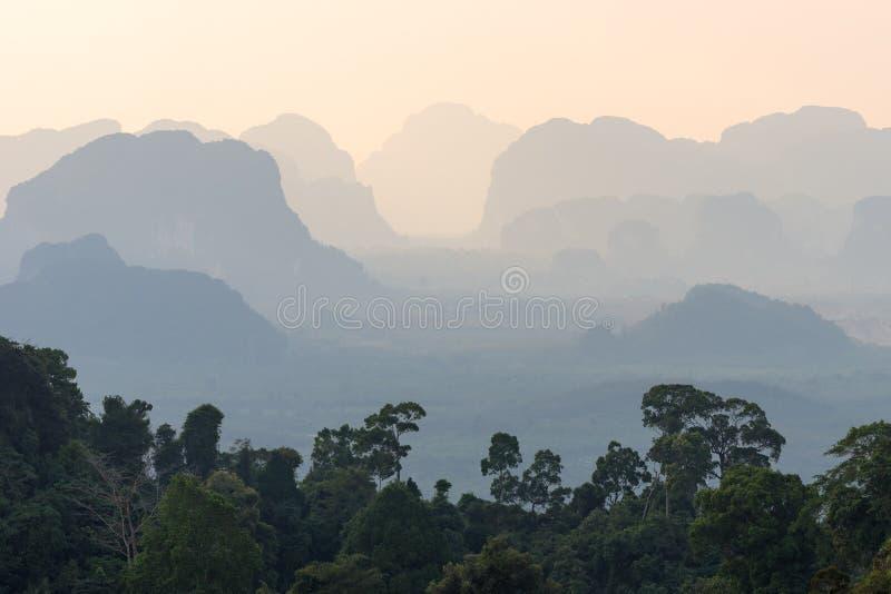 剪影热带朦胧的山透视风景和在前景的绿色密林树 库存图片