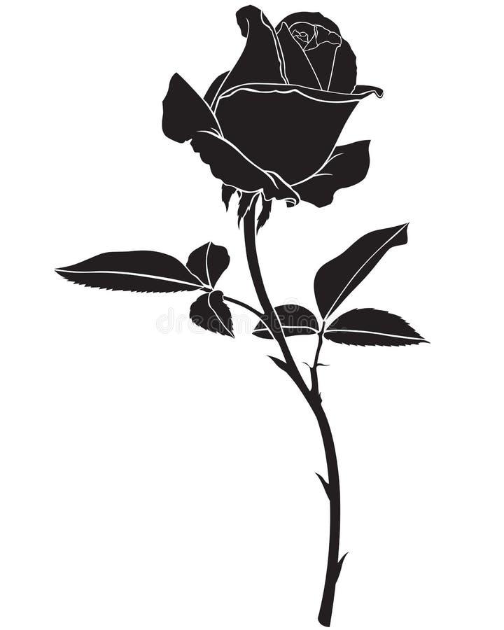 剪影玫瑰色花 皇族释放例证