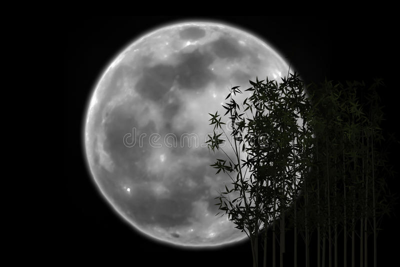 剪影竹阴影蚀了月亮 库存图片