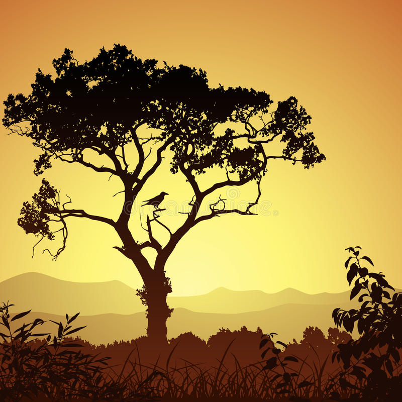 剪影结构树 库存例证