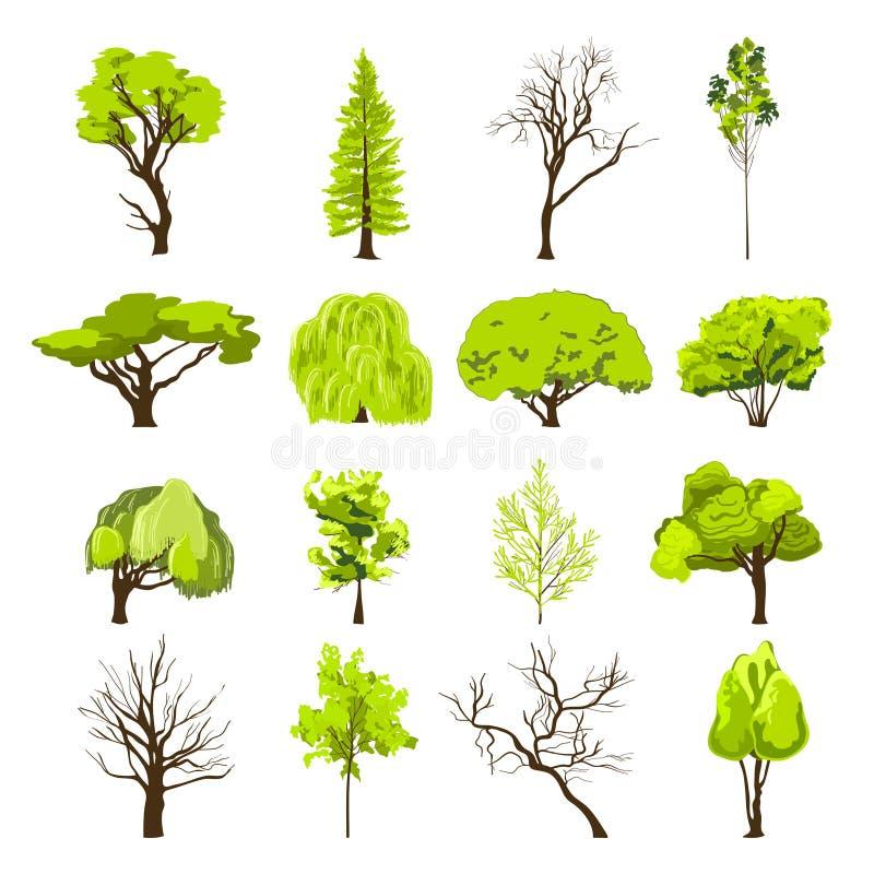 剪影被设置的树象 库存例证