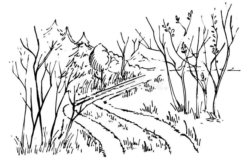 剪影道路在森林里 库存例证