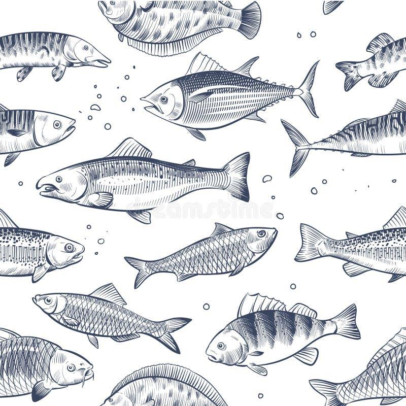 剪影钓鱼无缝的样式 被铭刻的海洋鱼封皮传染媒介葡萄酒背景 向量例证